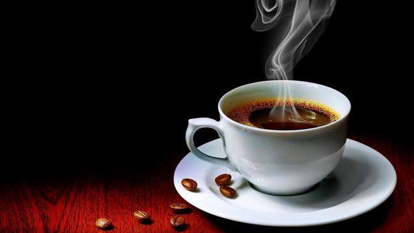 cafe-robusta-co-vi-gi