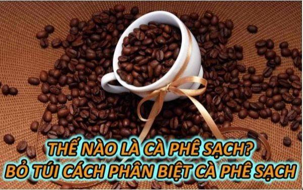 the-nao-la-ca-phe-sach