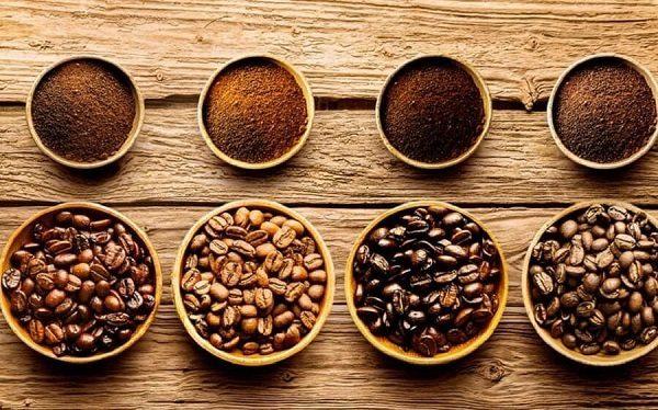 Một số hạt của các loại cây cà phê